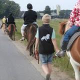 heste_10