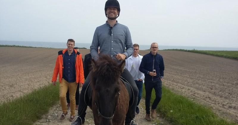 Polterabend til hest