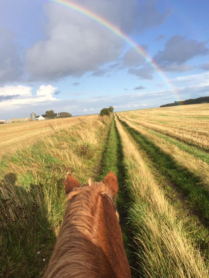 Ridetur turridning Samsø vejr regnbue
